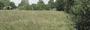 Земельный участок 14,0 соток в дер. Никитское Калязинского района Тверской области
